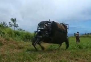 LS3 Mule