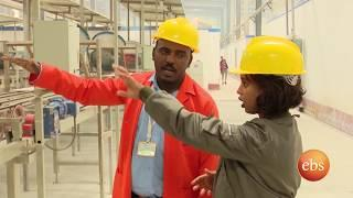 Dukem/  D - One Ceramic Manufacturing Company - Semonun Addis