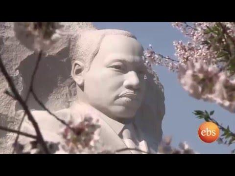 National Cherry Blossom Festival ( Washington Dc) - What's New | TV Show