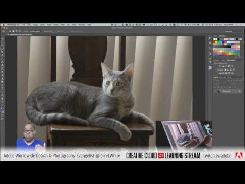 Introduction to Adobe Photoshop CC - Pt 5 - Adobe Camera RAW Filter |  | Educational