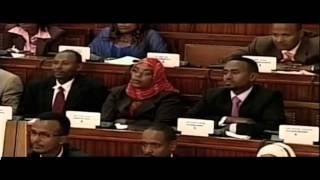 Terrorism in Ethiopia --  Part 4 - January 18, 2014