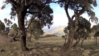 Seven Days in Ethiopia | Documentary -HD